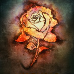 REVIEW: Indelible by Dawn Metcalf